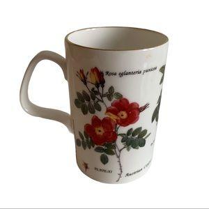 Vtg Coffee Mug Natural History Museum 1995 England